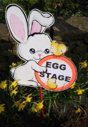 aaah, new egg stage sign