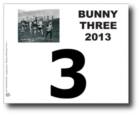 Race number, BR3